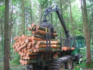 Porteur forestier
